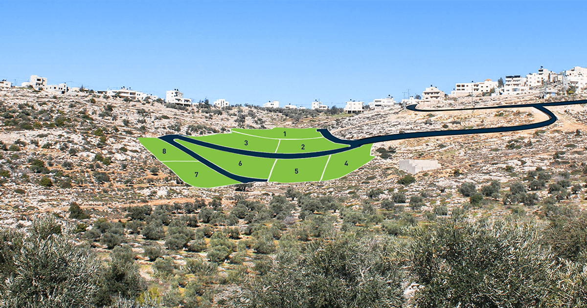 TABO Offers New Master Plan in Kobar-Ramallah, close to Birzeit University